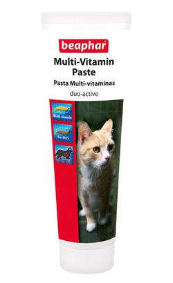 Beaphar Pasta Multi-Vitaminas | Gato