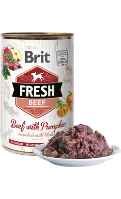 Brit Fresh Dog Beef with Pumpkin | Wet (Lata)